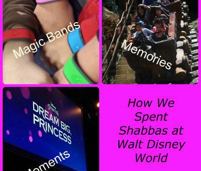 How We Spent Shabbas at Walt Disney World