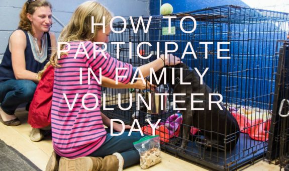 How to Participate in Family Volunteer Day on November 18 #ad